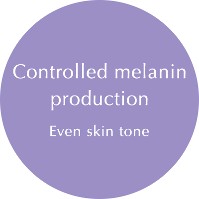 Melanin: Fair and Even tone