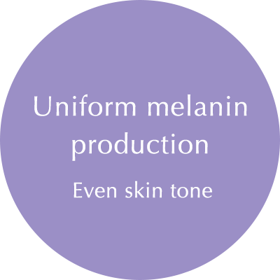 Fair and Even-Toned Complexion with Optimum Level of Melanin